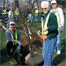 Casey Tree Planting at Rosedale